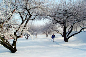 randolph3-outdoorrec-winter-walk