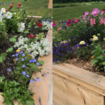 Grounds and Gardens Coming to Life